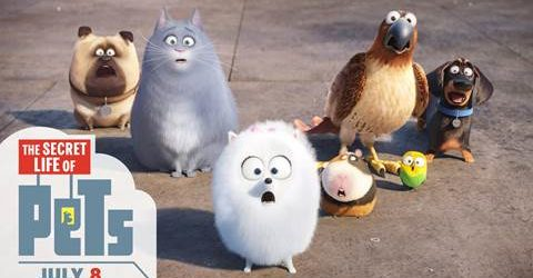 THE SECRET LIFE OF PETS – In Theaters July 8