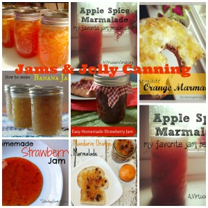 Jams and jelly canning collage